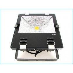 Faro Proiettore Led Flood Light Esterno IP65 Con Driver Meanwell